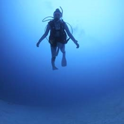 intro-diving01